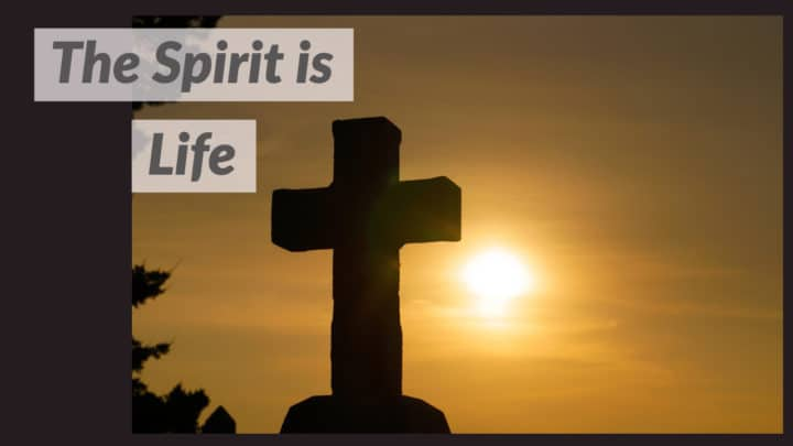The Spirit is Life